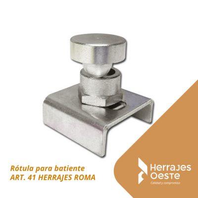 art 41 roma
